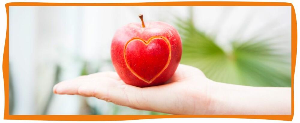EU-Schulprogramm - Obst, Gemüse, Milch und Milchprodukte für Bayerns Kinder